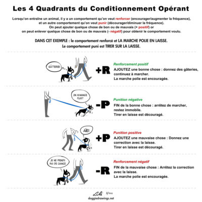Tabular presentation of operant conditioning examples with text in French and sketches of a dog being trained.